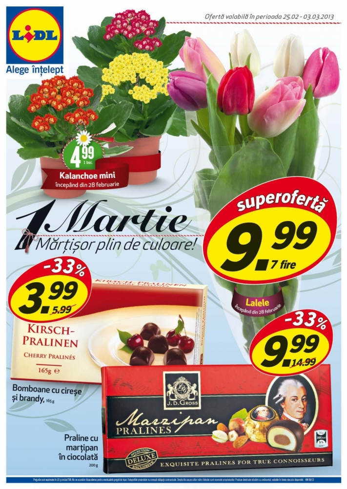 Catalog lidl oferte promotionale 25 februarie 03 for Cataleg lidl