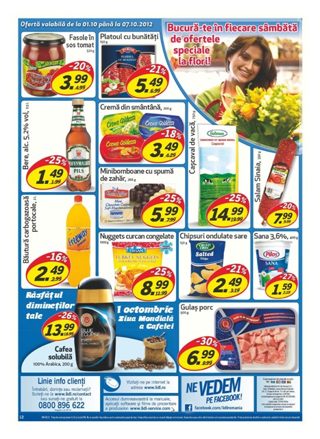Catalog lidl oferte promotionale for Cataleg lidl